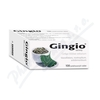 Gingio tablety por.tbl.flm.100x40mg